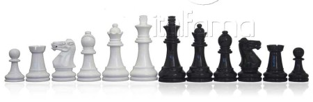 Chess Pieces – Precious Wood